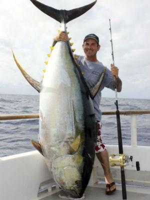 Nove em cada dez peixes são capturados aindajovens, antes que possam reproduzir (Foto: AP)
