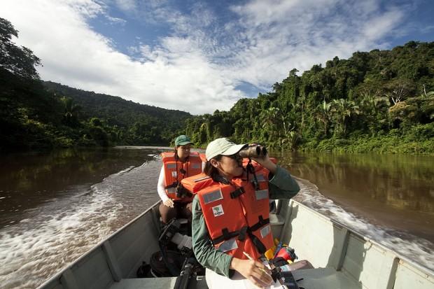 Cientistas procuram ninhos nas margens do Rio Itacaiúnas