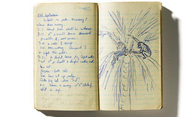 Anotação de Jane em um caderno de campo de 1961. Foto: Cortesia de Jane Goodall