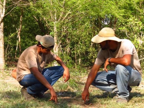 Diogo Lucatelli (direita) ensinando a rastrear onças – Foto: Disney Sousa