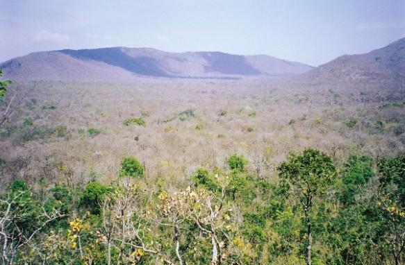 The Bandipur landscape. Photograph by Ullas Karanth.
