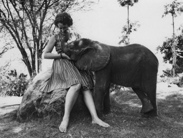 Daphne Sheldrick with baby elephant Aisha. Photograph courtesy the David Sheldrick Wildlife Trust.