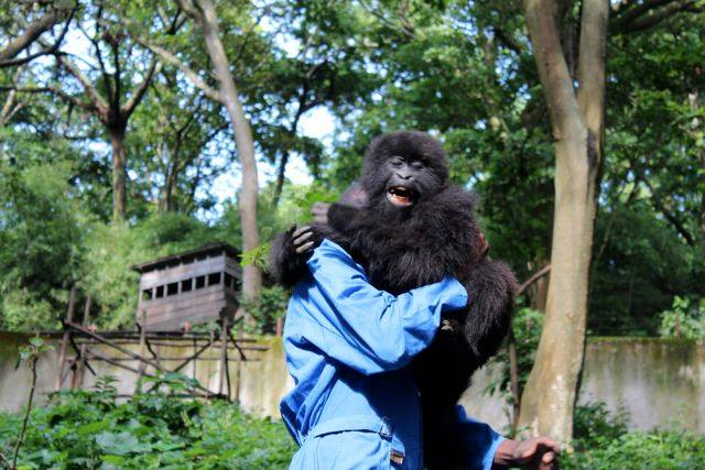 Matabishi playing with his caregiver. Photo courtesy of Bryn Hughes, 52 Media Inc.