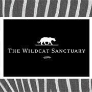 http://www.wildcatsanctuary.org/