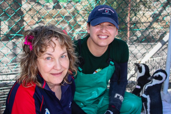 Margaret Roestorf, executive director, SANCCOB and Lana Vanagasem, manager of penguins and sea otters, Shedd Aquarium working together on-site in South Africa caring for African penguins.