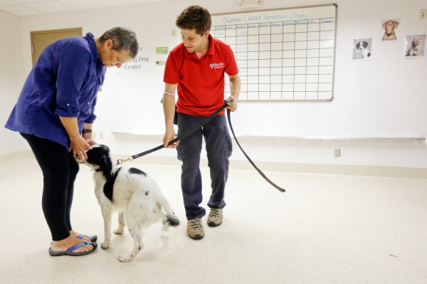 On August 1, 2013, Jonathan Ball (right) introduces Marta Drexler, an ovarian cancer patient, to McBaine, who is participating in a study about how dogs detect cancer. Photograph by Matt Rourke, AP