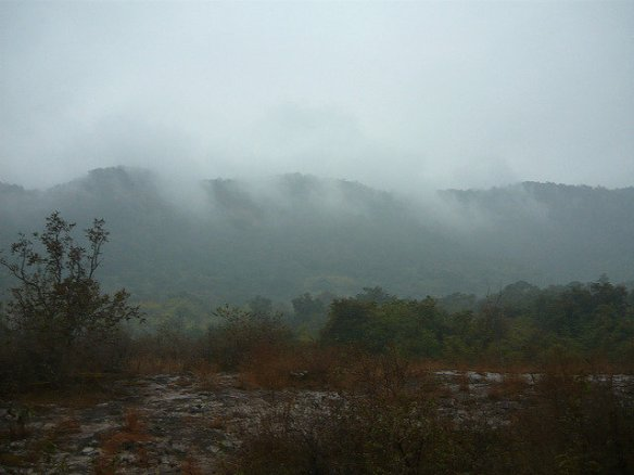 Mist across the Fort plateau during census week (c) Kay Hassall Tiwari